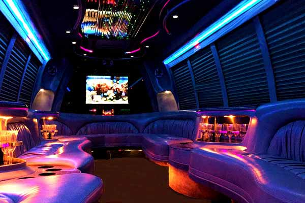 18 passenger party bus rental tampa