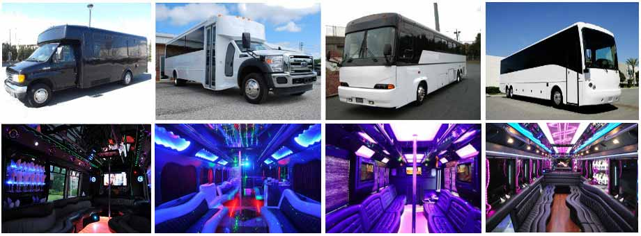 Airport Transportation Party Buses Tampa