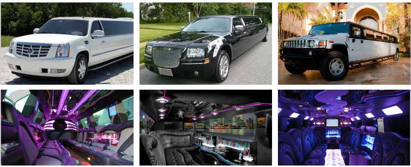 Wedding Transportation Party Bus Rental Tampa